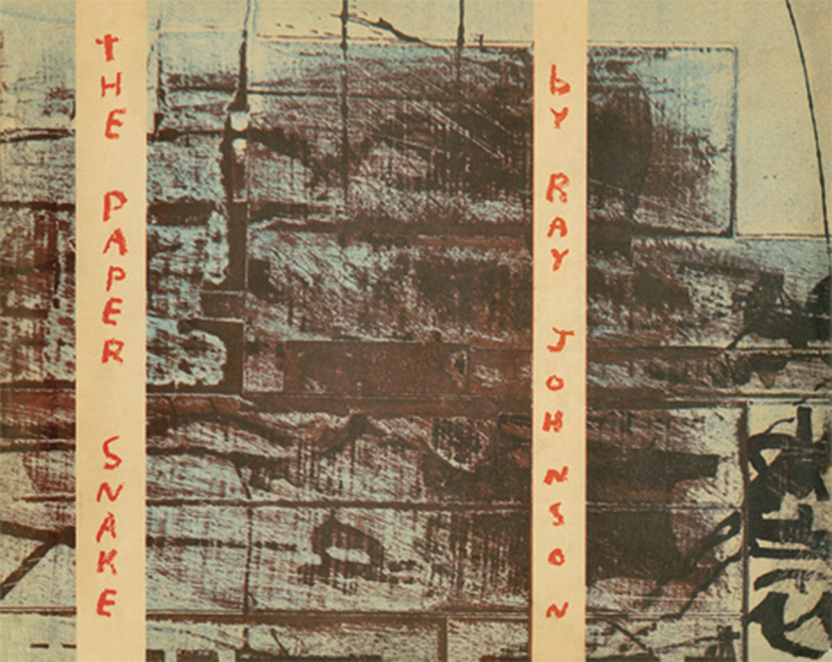 Cover of The Paper Snake